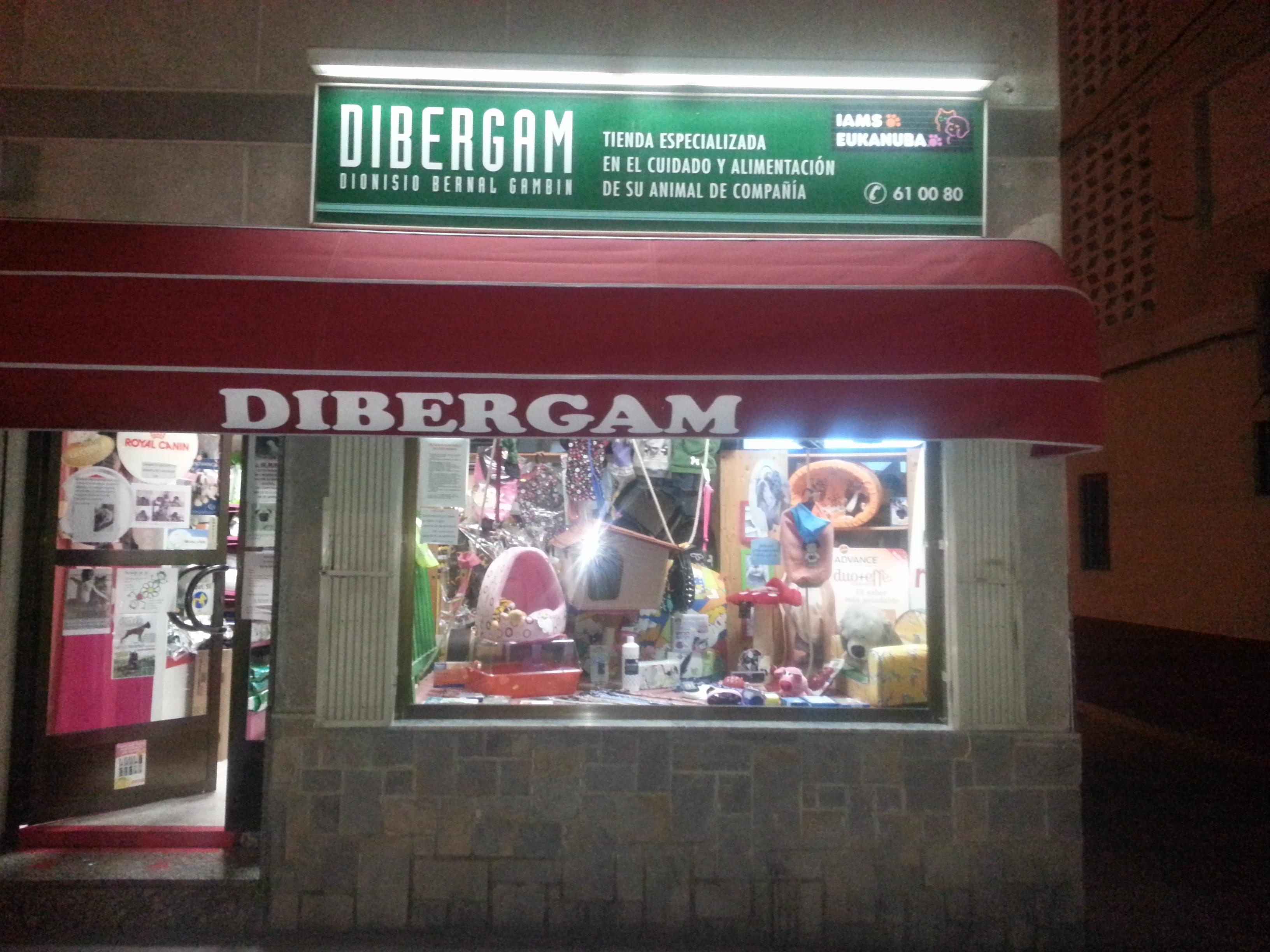DIBERGAM